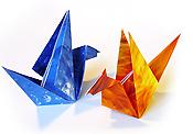 Origami daru